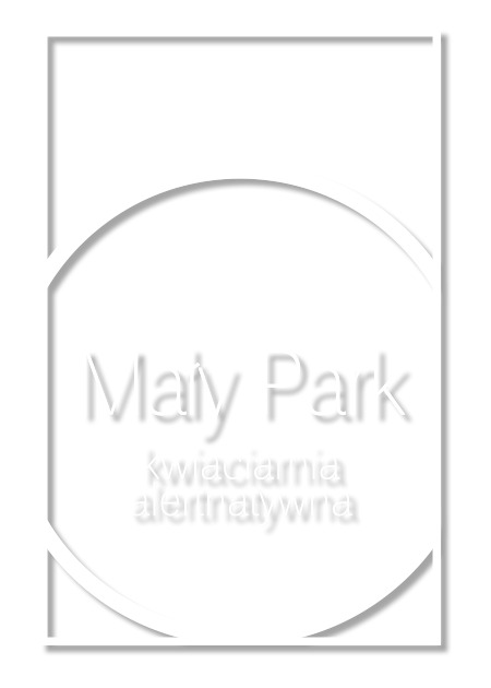 Mały Park, Kwiaciarnia Alternatywna